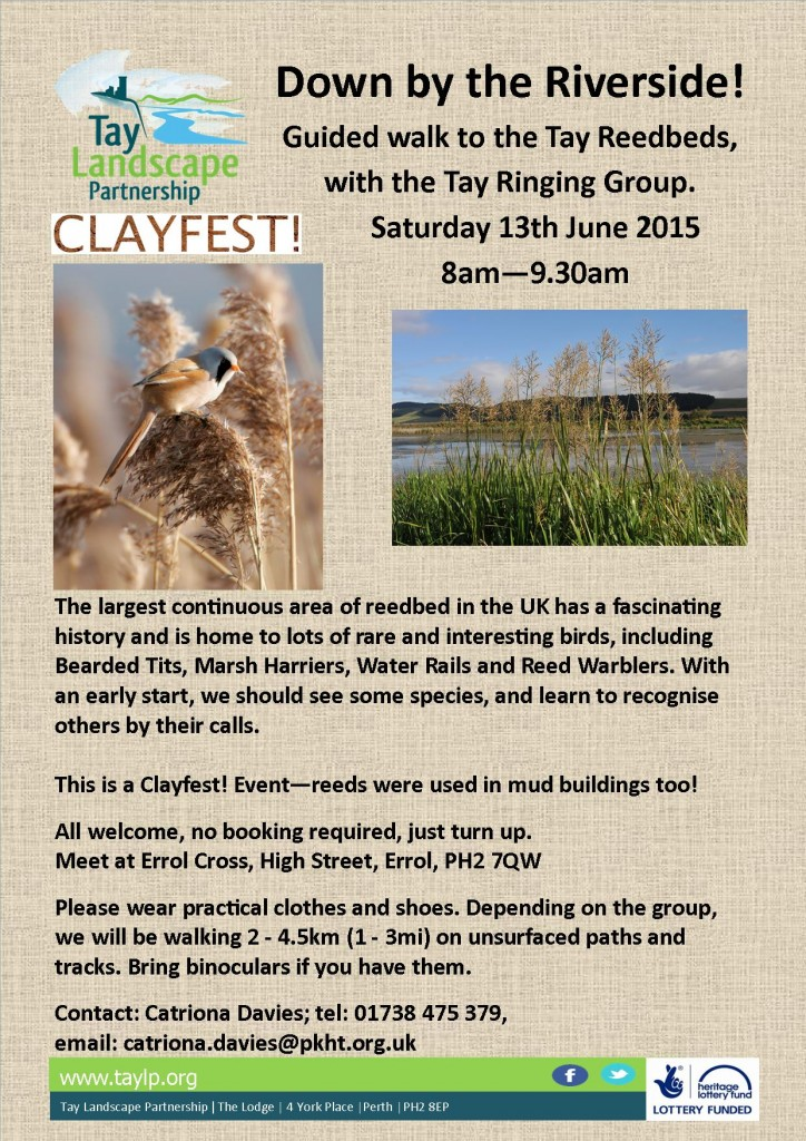 Guided walk on Tay Reedbeds 13.06.2015