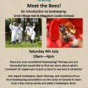 Meet the Bees! Saturday 4th July