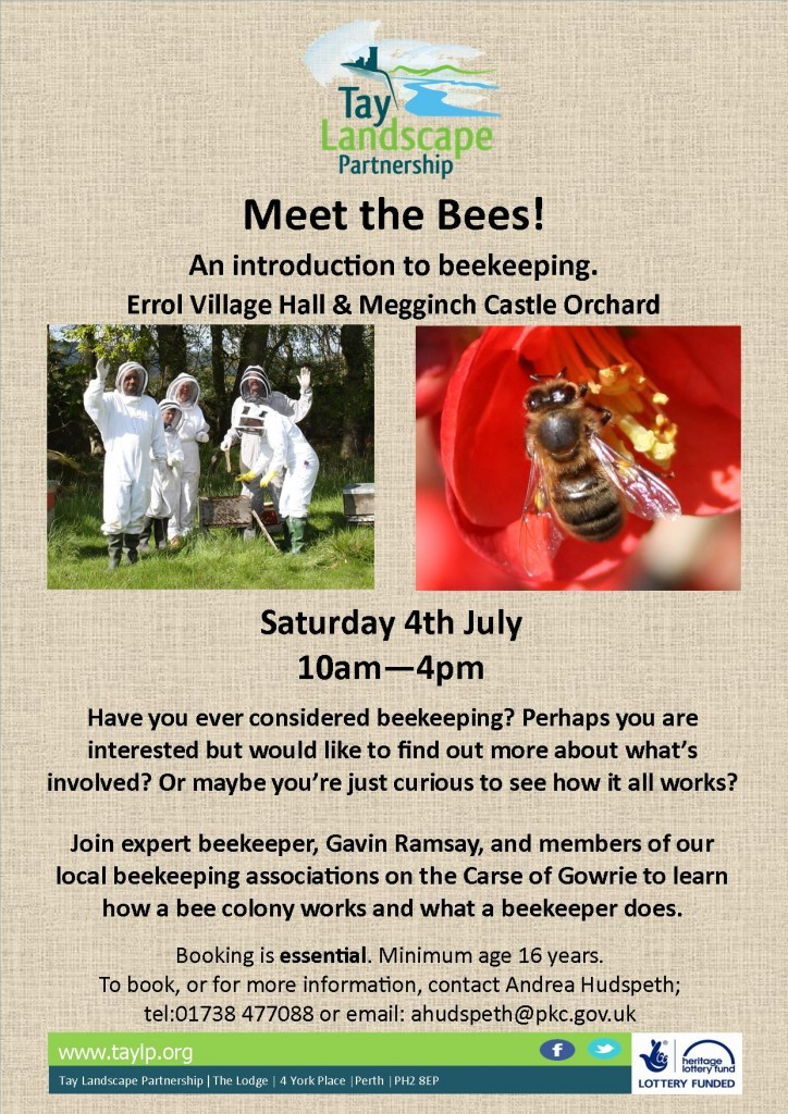 Meet the Bees 04.07.2015