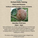 Orchard Skills Training: Pests and Diseases 27th June