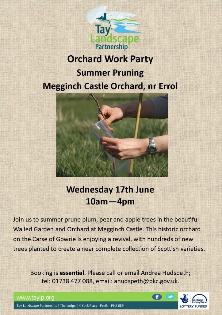 Summer Pruning, Megginch, 17_06_15