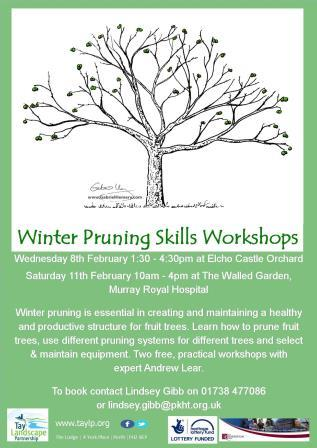 Winter Pruning Skills Workshop