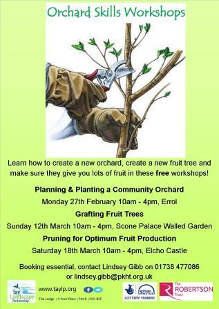 Orchard Skills Training workshops