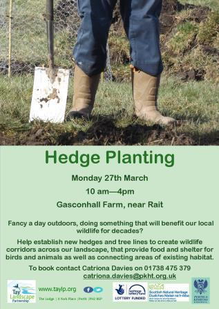 Hedge Planting – Gasconhall Farm