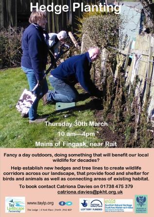 Hedge Planting – Mains of Fingask