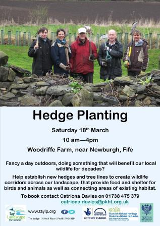 Hedge Planting – Woodriffe Farm