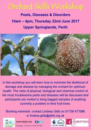 What's attacking your garden? Pests, diseases & disorders – Orchard Skills Workshop
