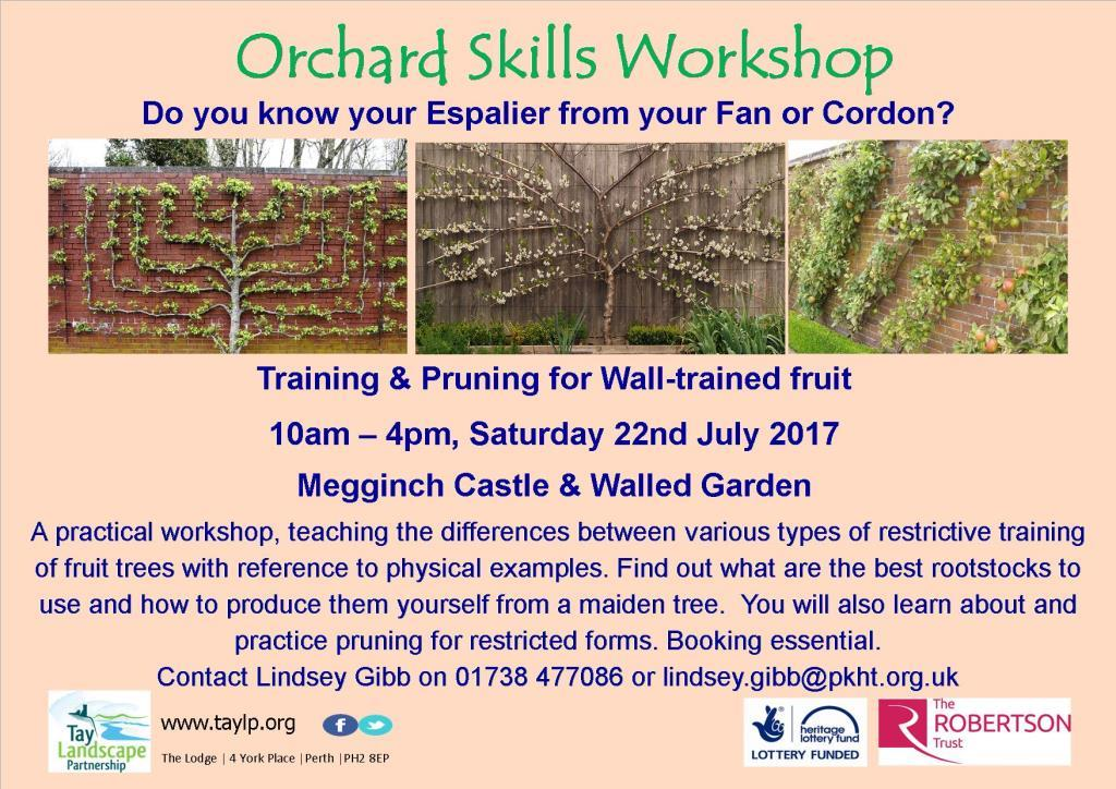 Training & Pruning for Wall-trained Fruit – Orchard Skills Workshop – 22 July 2017