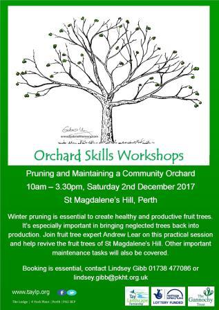 Pruning & Maintaining a Community Orchard – 2nd December – Perth – Fully Booked