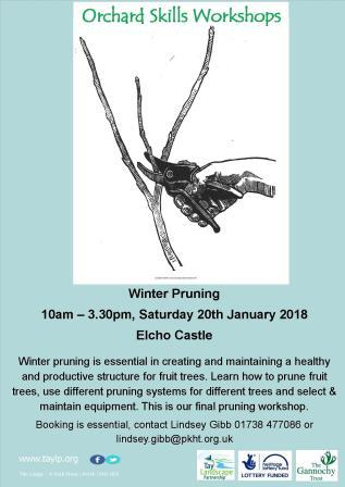 Winter Pruning – 20th January 2018 – Elcho Castle – Spaces available