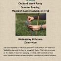 Summer Pruning, 17th June, Megginch Castle